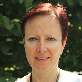 Mgr. Alžběta Čapková Hacklová Geronto – akutní péče Psychiatrické nemocnice Bohnice